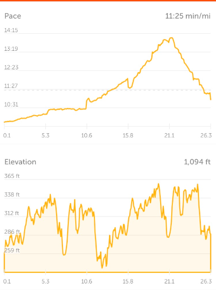 Our race pace and elevation profile.