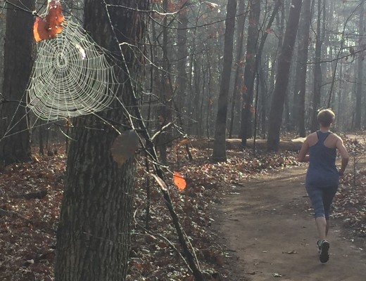 Mary Catherine on the trail at Reynolds Nature Preserve with spider web in foreground