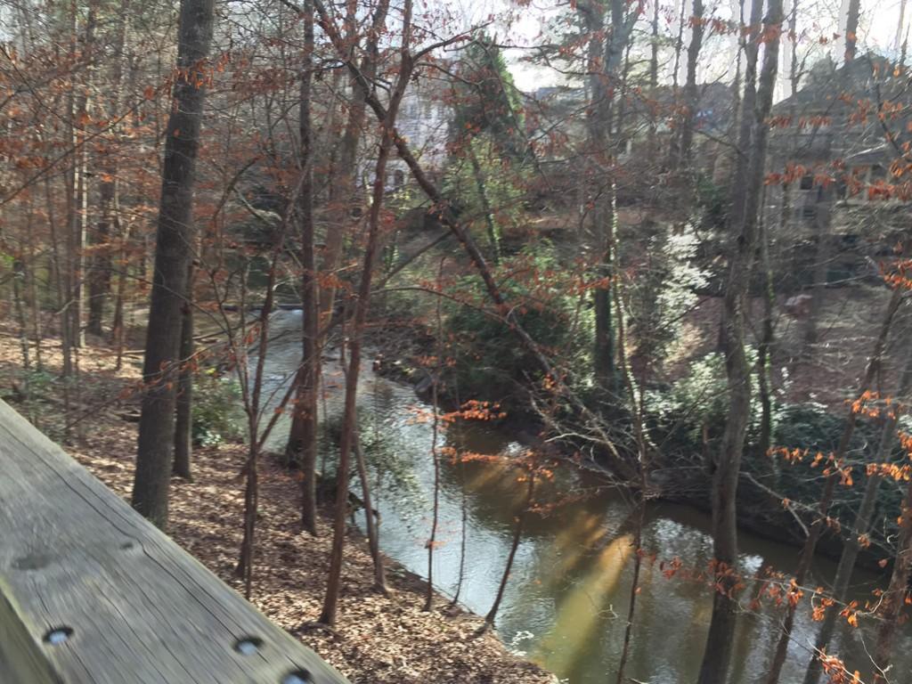 South Peachtree Creek down below the South Peachtree Creek Trail boardwalk