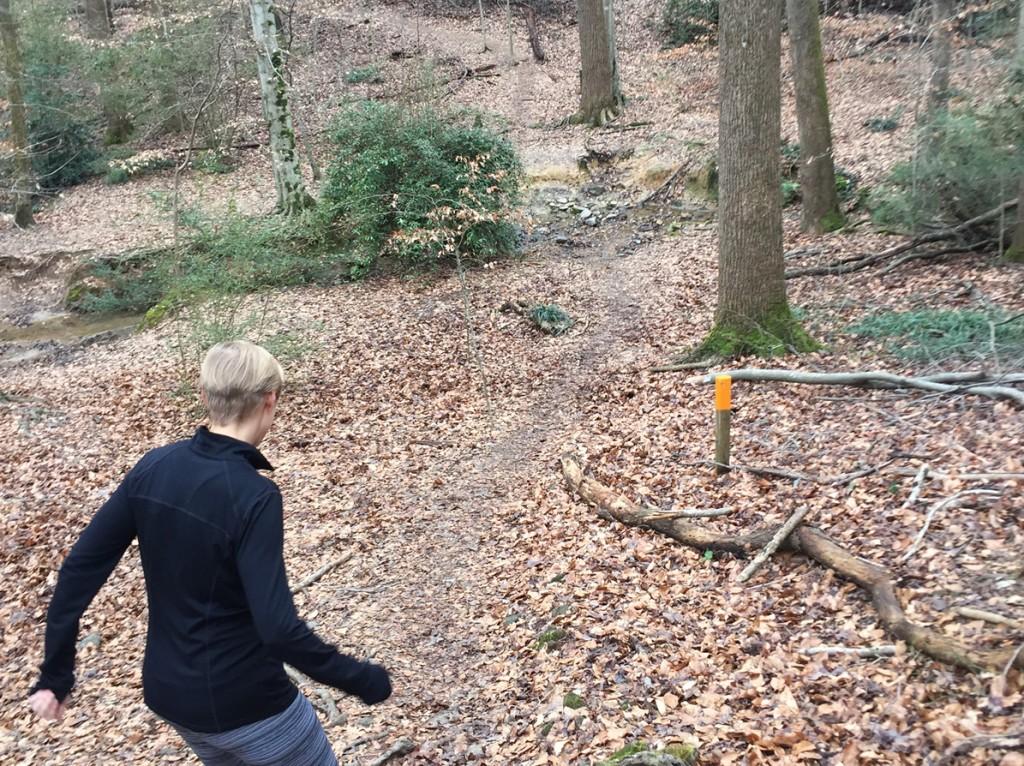WD Thomson Park - orange trail