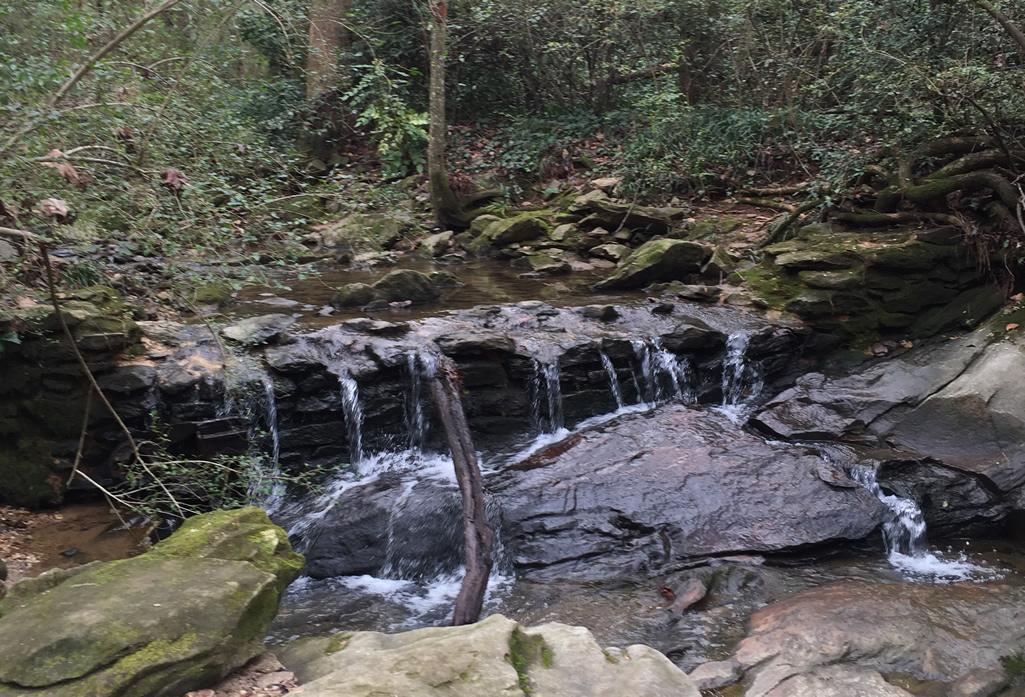 Creek at WD Thomson Park, Decatur, GA